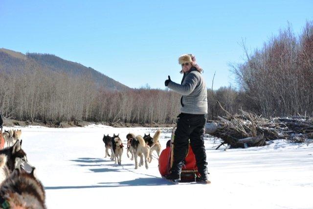 dog sledding in terelj national park