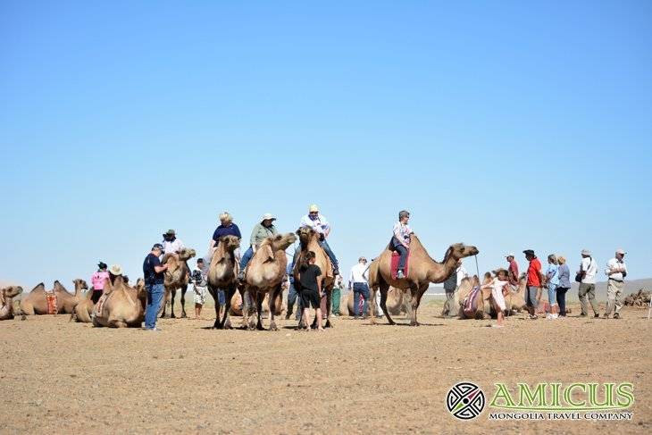 8 Tips for travel to Gobi Desert in Mongolia