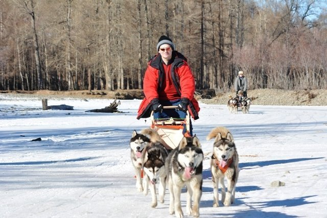 Dog sledding in Mongolia