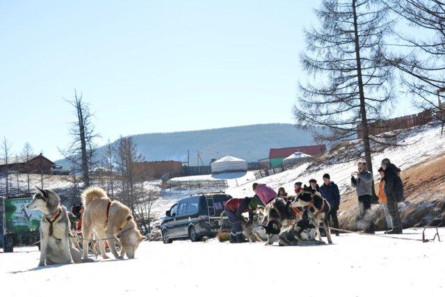 mongolia winter travel
