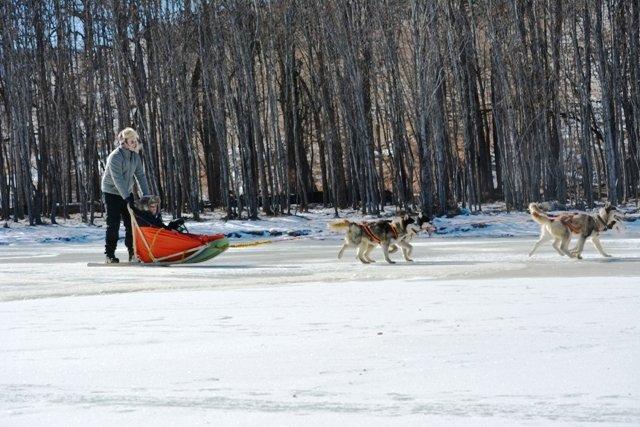 mongolia winter trip program