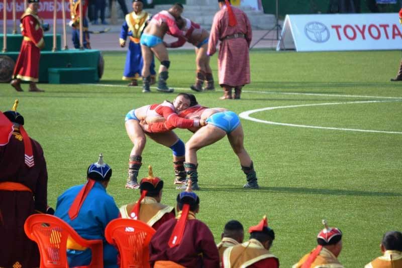 national wrestling of Mongolia at Naadam festival
