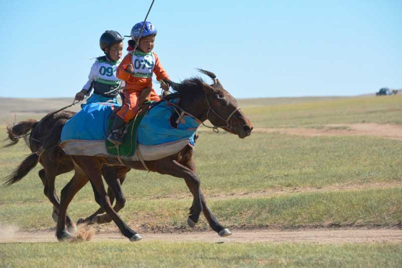 horse racing at naadam festival