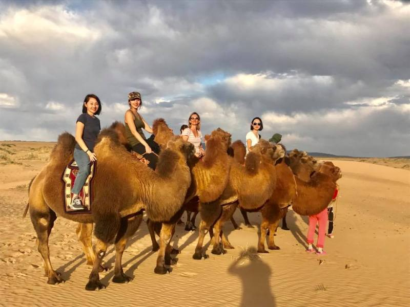 Camel riding at Khongor sand dunes