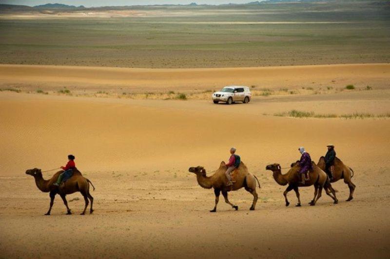 Camel riding in the Gobi Desert, Mongolia