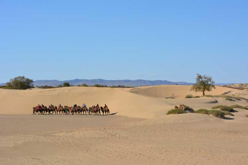 Bayan Gobi sand dunes