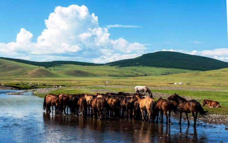 Countryside of Mongolia