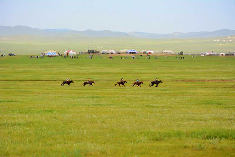 horse racing at Mongolia Naadam Festival