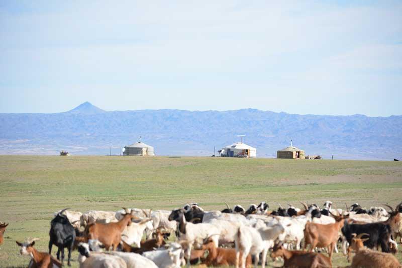 Mongolian countryside view