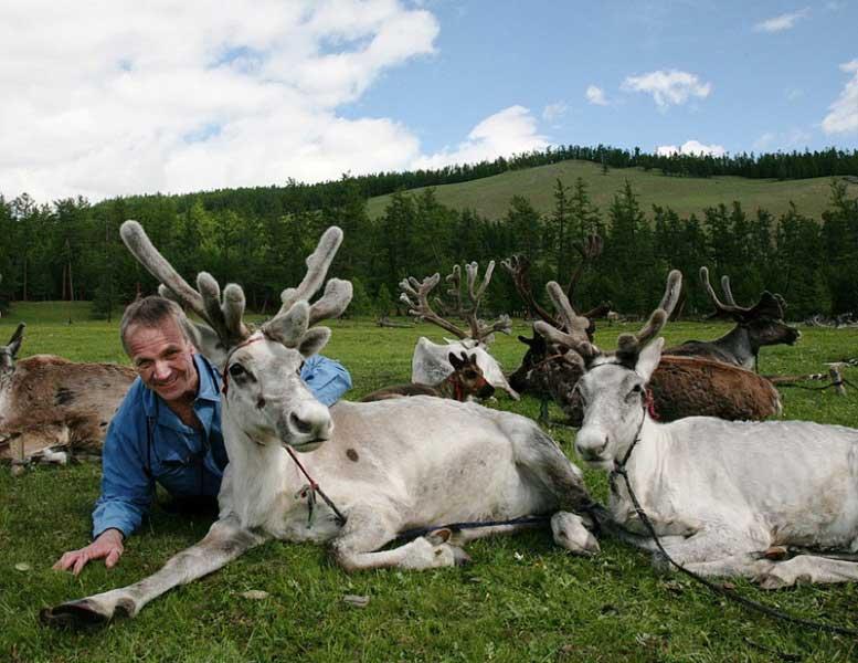 Reindeer herder or Tsaatan in Northern Mongolia