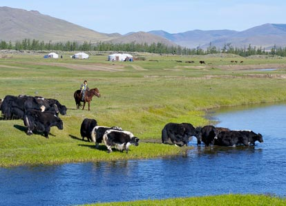 Mongolia Tour 12 days
