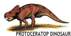 dinosaur found in Mongolia